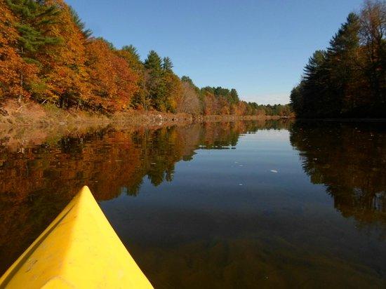 Kayaking On Saco River