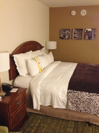 Tampa Airport Marriott: Bed