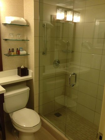Tampa Airport Marriott: Updated bath - shower