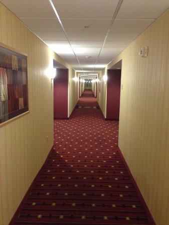Residence Inn Tampa Westshore/Airport: Hallway