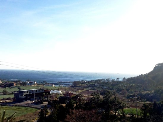 IRO JeJu: View