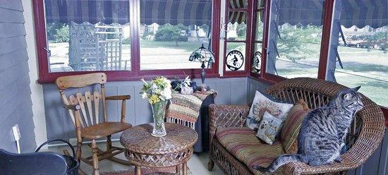 Sugar Maple Trailside Inn: Inn porch with cat
