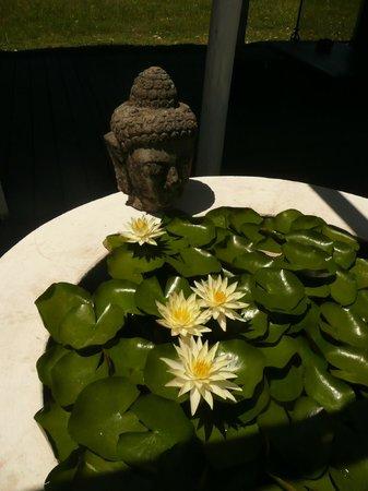 Kama-Loka: Budha