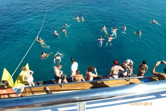 Paphos Sea Cruises: Warmer than the hotel pool a dip in the Med