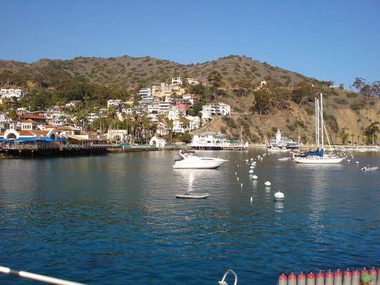 Catalina Island Visitor Center : The island from the boat