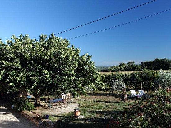 Organic Provence at La Vudele : Garten