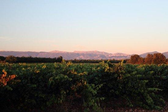 Organic Provence at La Vudele : Ansicht auf die Berge vor dem Haus