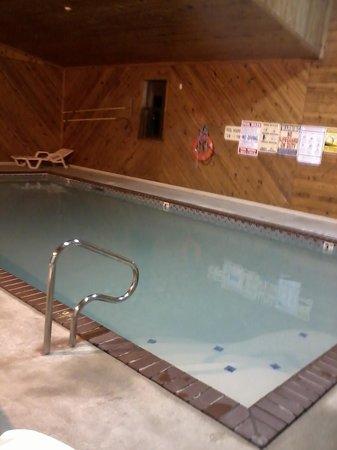 Ramada Decatur: pool