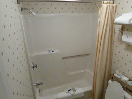 Flagship Inn: Ok Shower