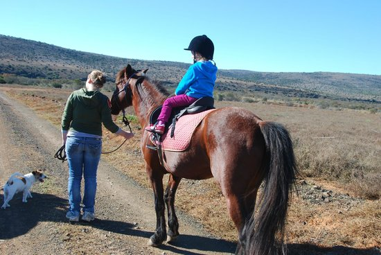Ufumene Game Lodge : Horseriding Fun