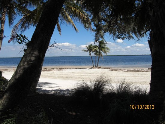 Useppa Island: Beach thru the trees