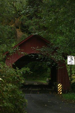 North Fork Yachats Covered Bridge: Yachats Covered Bridge