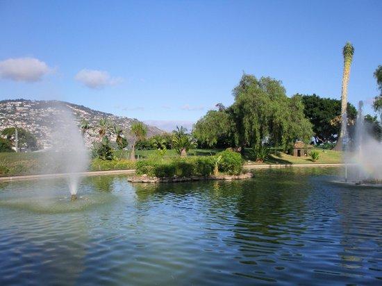 Aparthotel Imperatriz: Это тот самый красивый парк рядом с отелем.