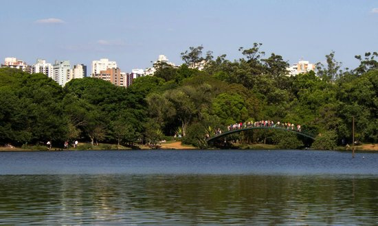 Pullman Sao Paulo Ibirapuera: Pic I took at nearby Iberapuera Park on a Sunday