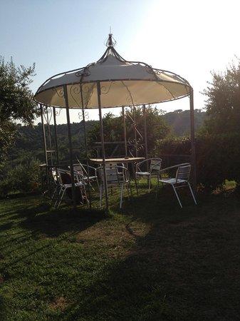Agritourism Il Colle delle Querce : giardino