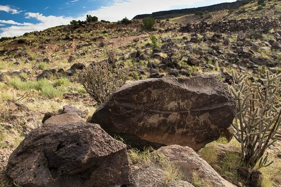 Outspire Hiking and Snowshoeing: Petroglyphs