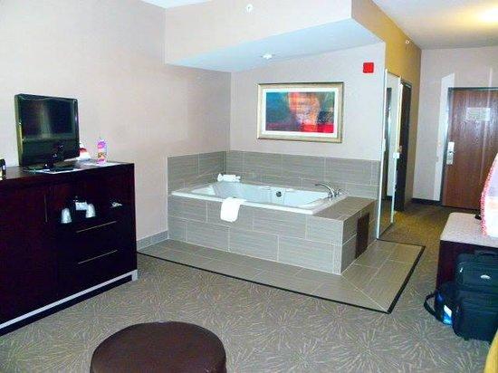 Holiday Inn Express Toledo North: jaccuzzi