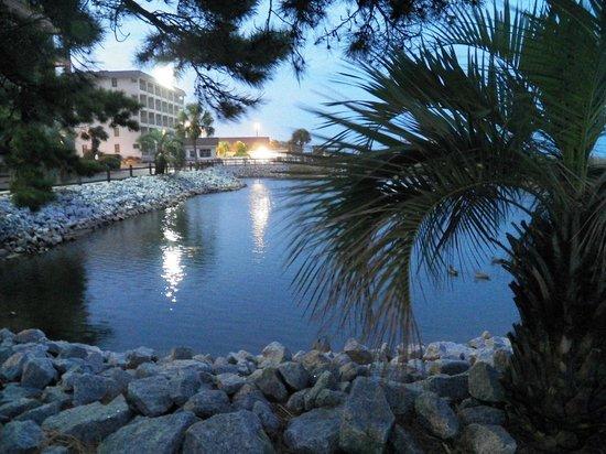 Myrtle Beach Resort: Beautiful landscape