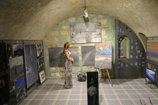 Hotel U Krize: арт-галерея в отеле