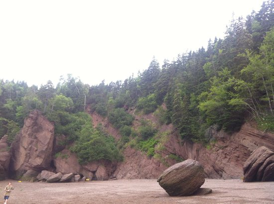 Hopewell Rocks: ...