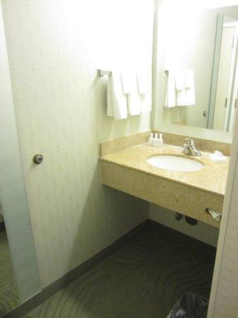 SpringHill Suites San Diego Rancho Bernardo/Scripps Poway : vanity area