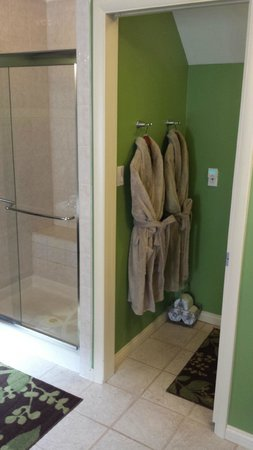 Up Up and Away Lodging: The shower has double shower heads and plenty of room for two!