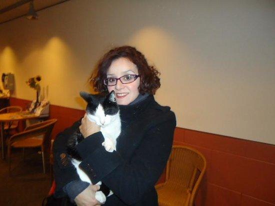 Hotel Beursstraat: Le charmant chat qui nous a accueillis à l'entrée!