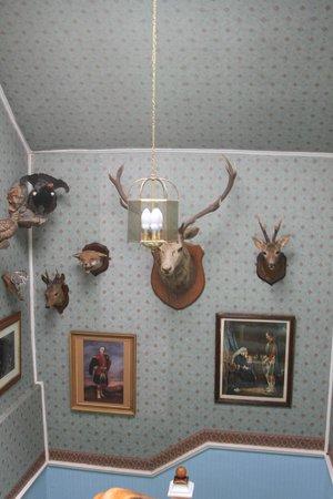 Kinkell House: в доме