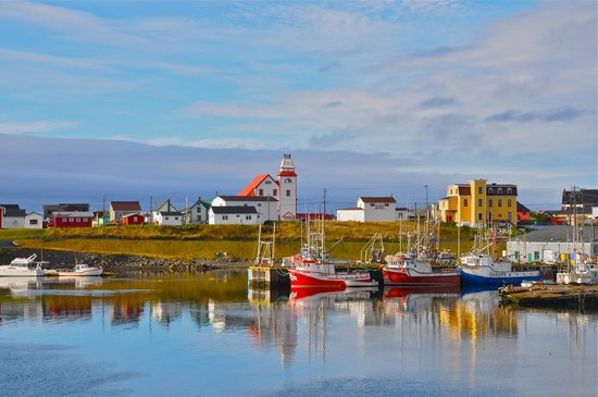 Harbourview Bed & Breakfast: Bonavista Harbour