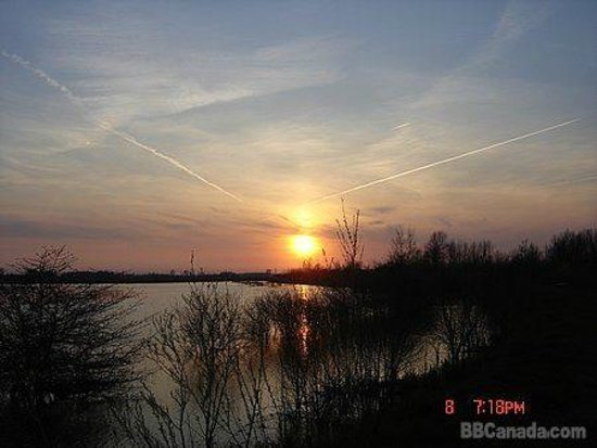 Blue Heron Getaway B&B: Sunset