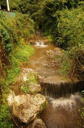 Valle delle Ferriere: el calmo rumor del agua