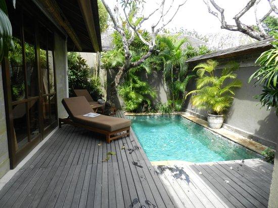 Jamahal Private Resort & Spa: Our pool
