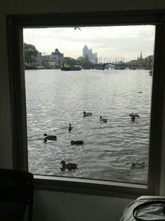 Houseboat Little Amstel: Window
