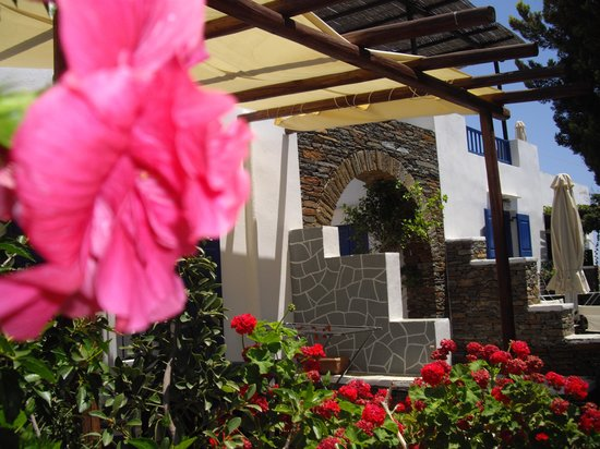 Fassolou Studios: Όλο το ξενοδοχείο περιβάλεται απο ανθησμένα φυτα και λουλουδια