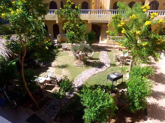 SeaHorse Hotel: Garden, view from terrace