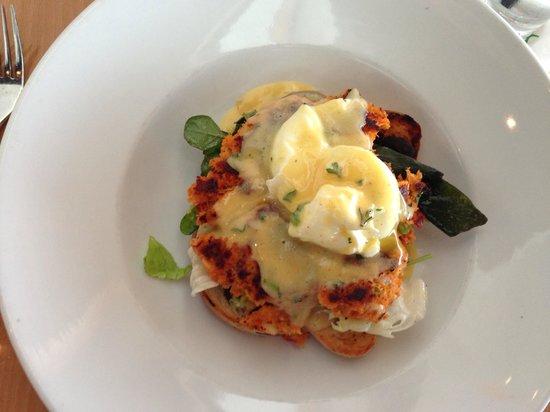 Sorrel Urban Bistro: Lobster Benedict