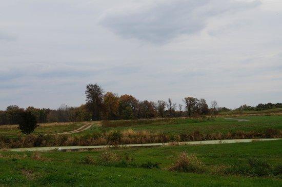 Greig Farm : The property has a pond