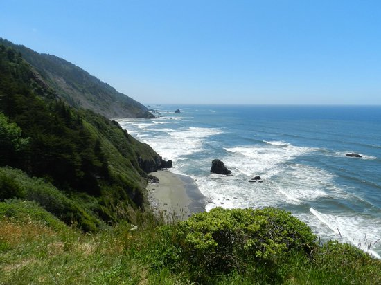 Redwood National Park: We were surprised to find a beach near the Redwoods!