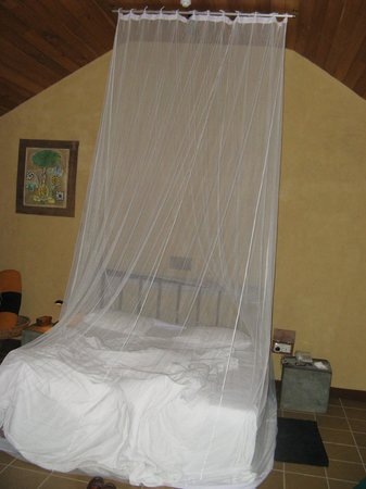 Jetwing Ayurveda Pavilions: Room at the hotel