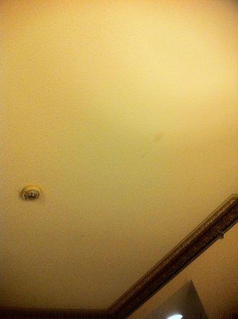 Comfort Inn : Ceiling