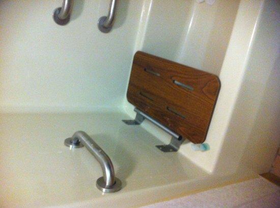 Comfort Inn: Medieval bathroom