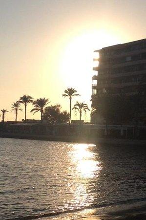 Hotel JS Palma Stay: sunset