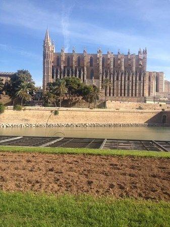 Hotel JS Palma Stay: palma cathederal