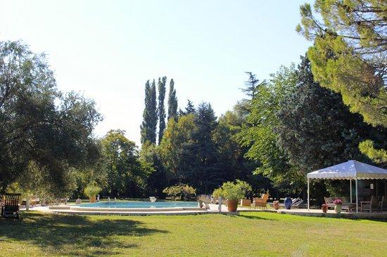 Domaine du Moulin: In the Garden