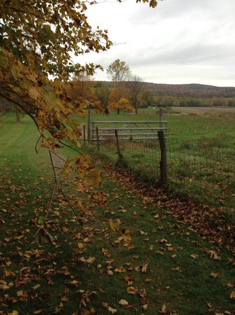 Deerfield Inn: Deerfield village