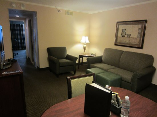 Embassy Suites by Hilton Baltimore BWI - Washington Intl. Airport : In front room