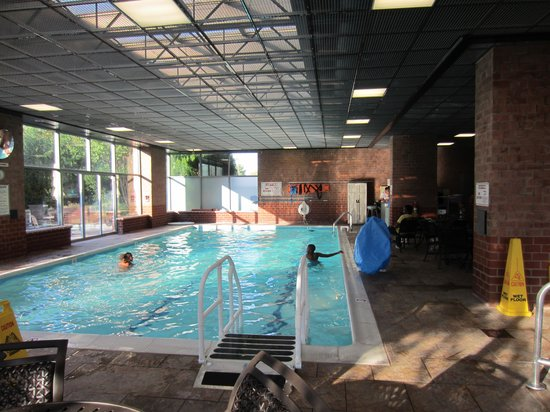 Embassy Suites by Hilton Baltimore BWI - Washington Intl. Airport: Pool