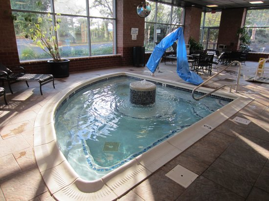 Embassy Suites by Hilton Baltimore BWI - Washington Intl. Airport: Hot Tub