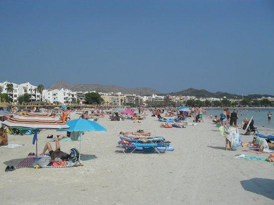 3. - Picture of Playa de Alcudia, Port dAlcudia - TripAdvisor