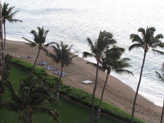 Royal Kahana: view of beach and palm trees